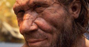 Neandertallerin İlkel Tür Olduğu Algısını Yıkan 6 Sebep